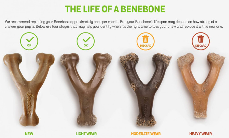 benebone vs nylabone wishbone wear and tear