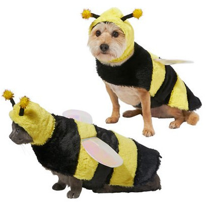 awesome dog costumes - bumble bee