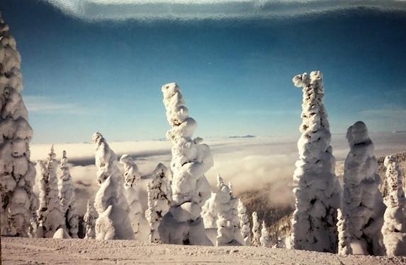is skiing fun - whitefish