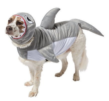 awesome dog costumes - shark attach dog costume