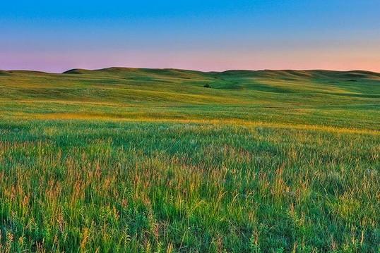 what's a prairie girl - grasslands