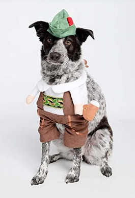 awesome dog costume - german beer