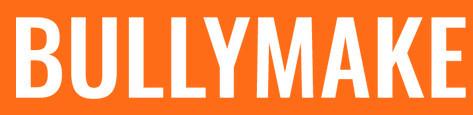 bullymake box reviews - name logo