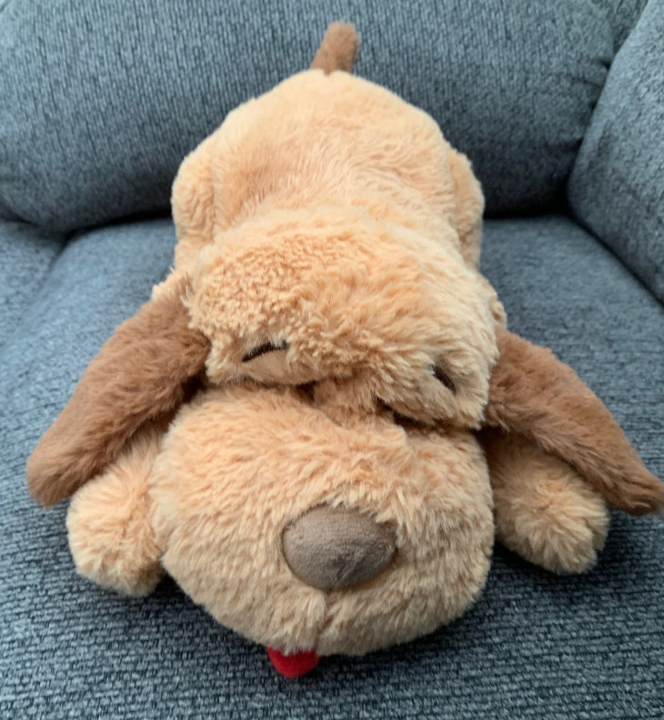 snuggle puppy toy picture