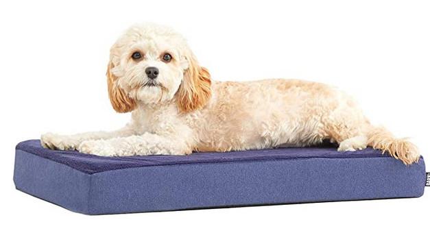 best dog crate beds - barkbox