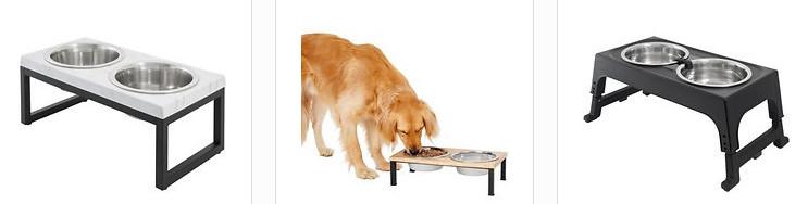 shoud dog bowls be elevated - selection screenshot