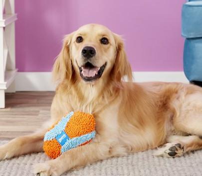 Chuckit Fumbler Dog Toy Screenshot