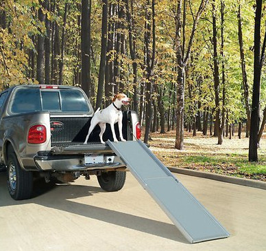 best dog car rap Petsafe telescoping ramp