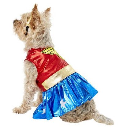 awesome dog costume - wonder woman