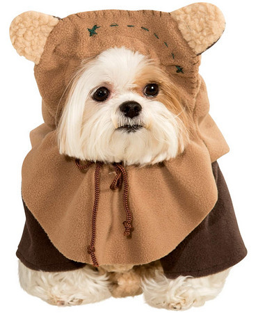 awesome dog costume - star wars Ewok