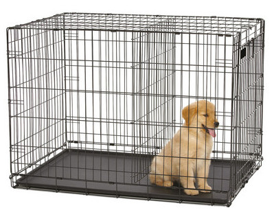 how big should my dog crate be - crate with divider