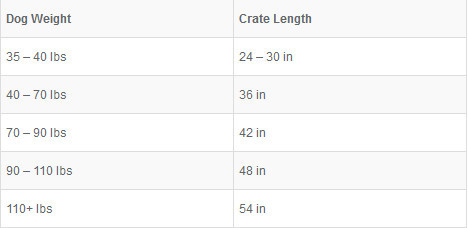 how big should my dog crate be - crate sizes