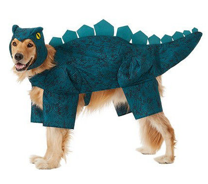 awesome dog costume - dinosaur
