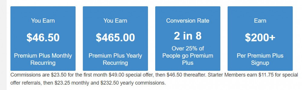 Wealthy Affiliate earnings with affiliate program with Premium Plus membership