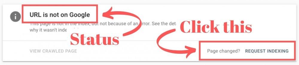 google-search-console-status