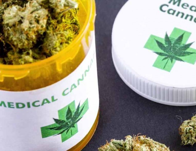 THC and CBD Oil – Can The Two Together Fight Cancer? | CBD