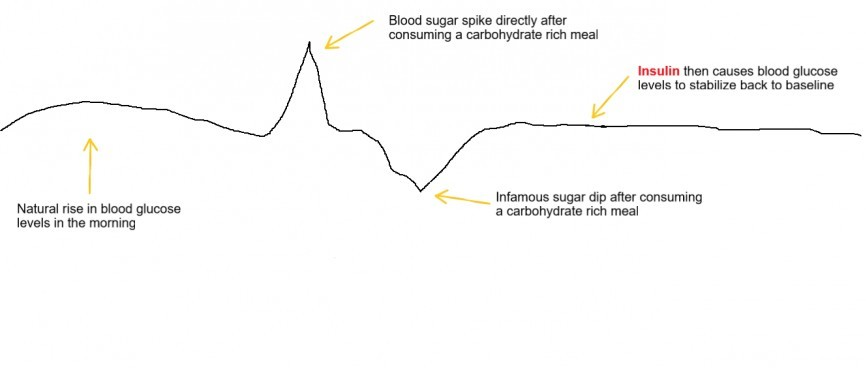 Blood sugar diagram when consuming carbohydrates