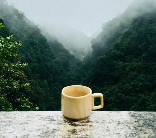 Coffee and tea help brain function