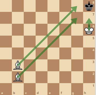 Two bishops checkmate 1