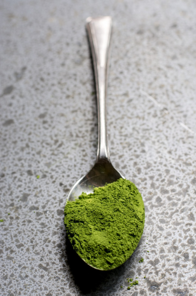 What Is Pea Protein Powder? - Veggie Gains