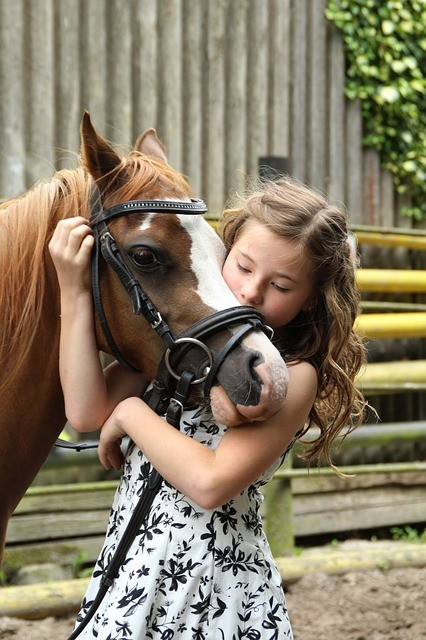 Did you know what is equitherapy?