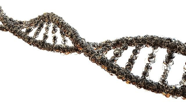 We Know Different Types of Genetic Disorders