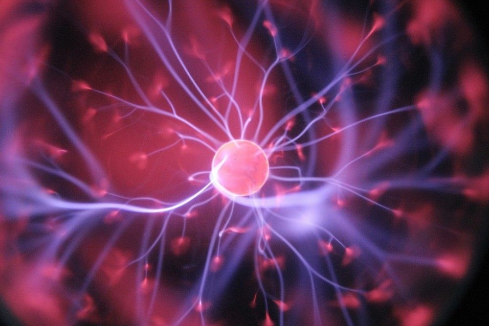 Neuroscience Definition and History