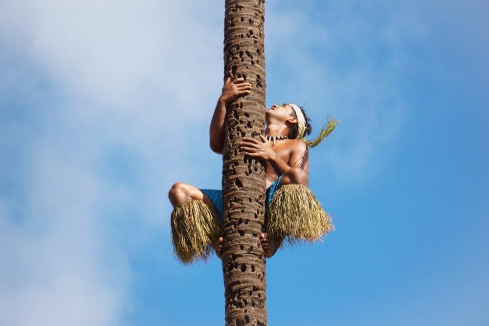 Origin of natural coconut oil
