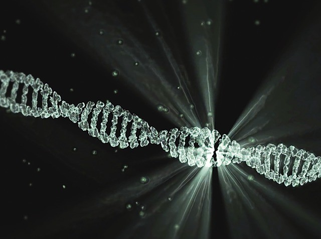 Discover the miracle of DNA
