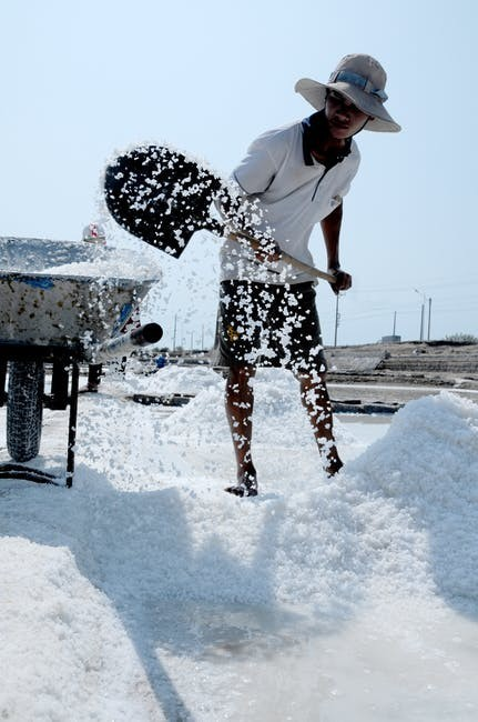 Importance of Salt in the Human Body