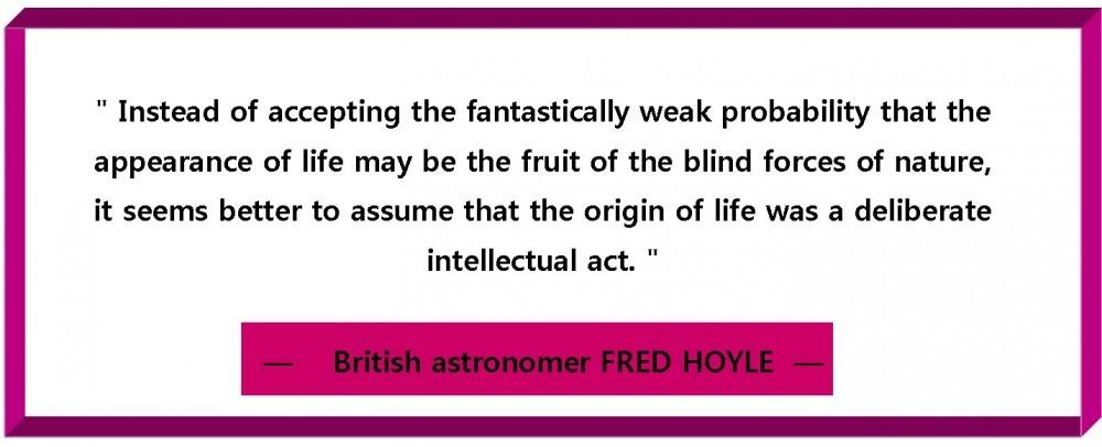blind force