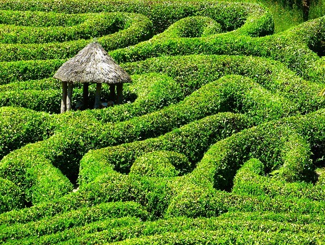 a little hut in the middle of a maze made of grass
