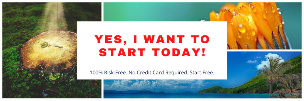Start a business today for free