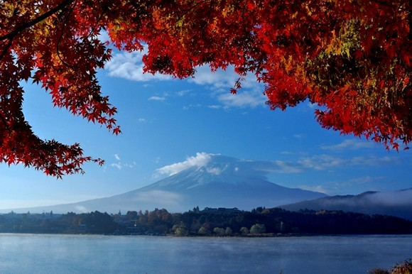 Autumn foliage at Fuji Five Lakes, Japan
