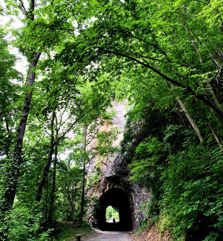 Austinville tunnel