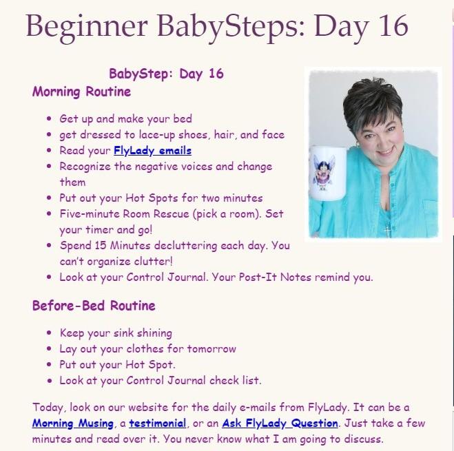 Flylady Babysteps Day 16