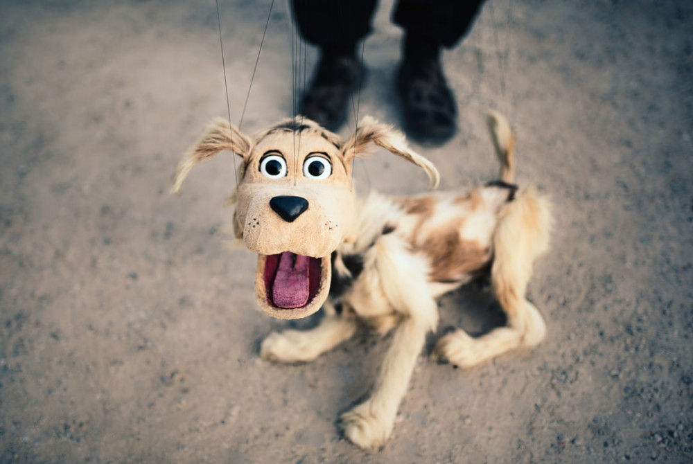 stay connected with friends and family - puppet dog