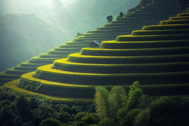 virtual trip to asia for homeschoolers - terraces for farming