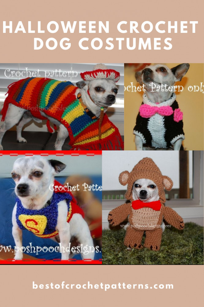 Halloween Crochet Pet Costume - Small Dog Clothes
