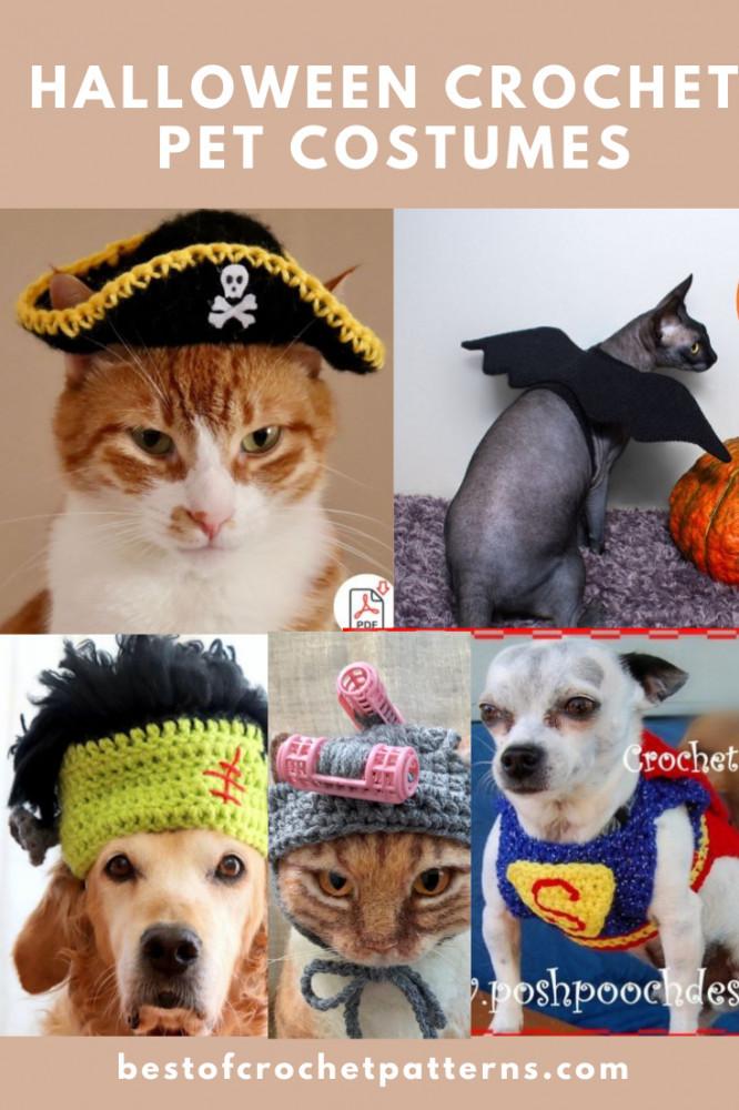 Halloween Crochet Pet Costumes - Animal Clothes Patterns