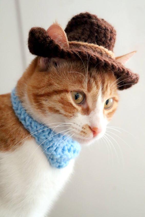 Crochet Cat Halloween Costume - Cat Cowboy Hat Pattern