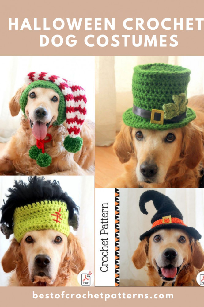 Halloween Crochet Dog Costumes