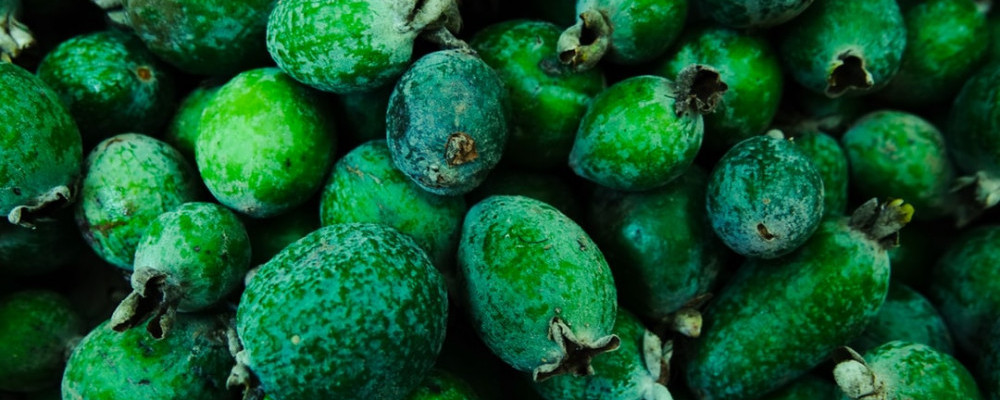 Make sure to test some Feijoa flavoured rock candy | 12 New Zealand Snacks You Must Try At Least Once