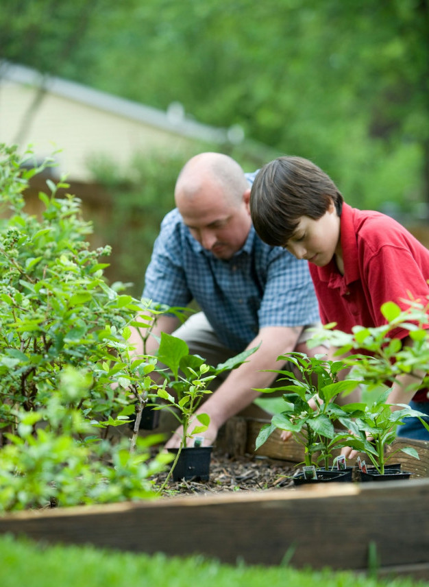 The Benefits to Growing Your Own Food - planting