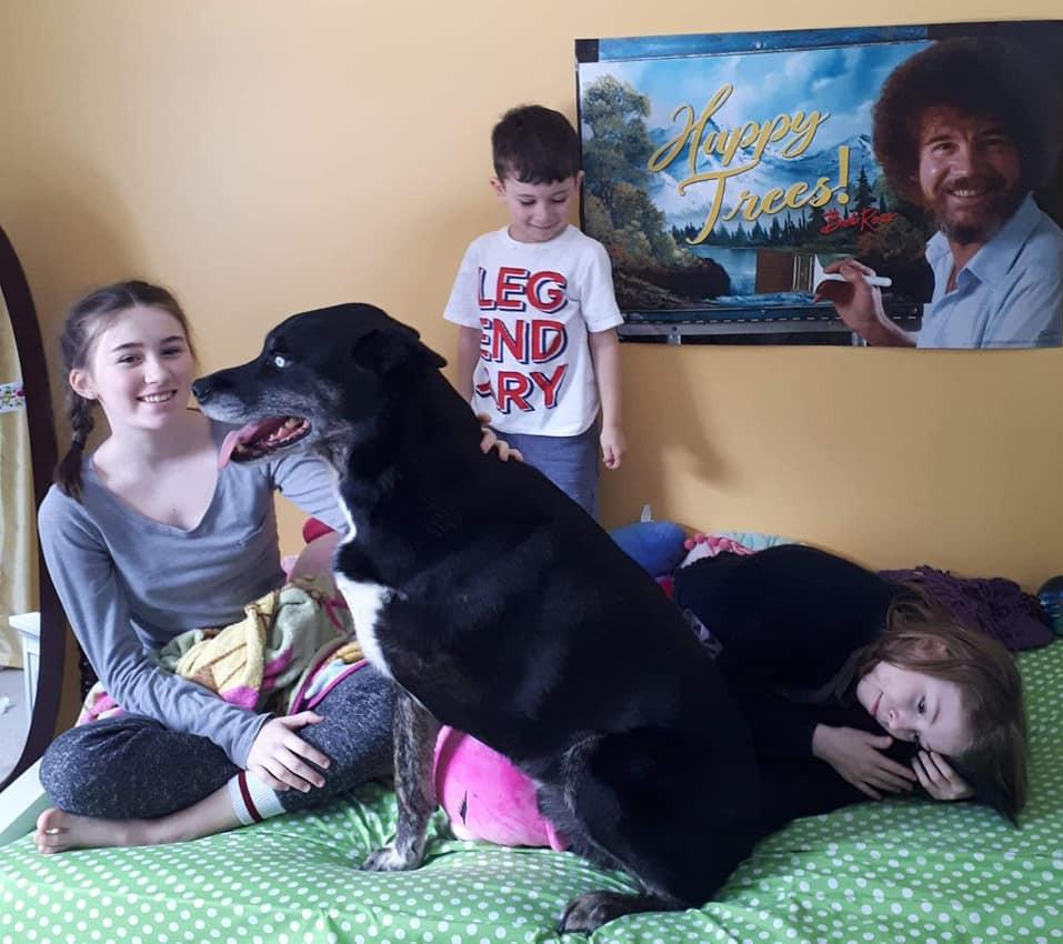 Grieving Dog Loss - special bonds