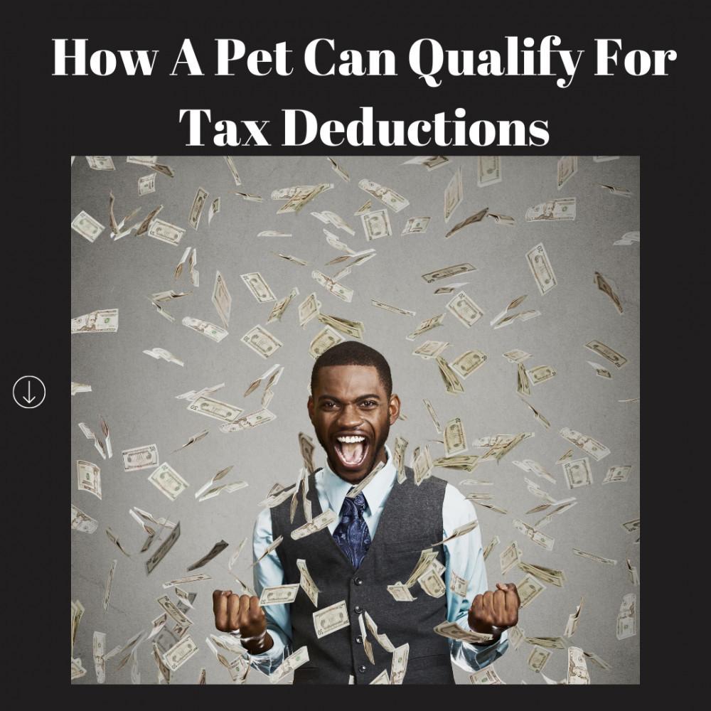 FB / IG TAX DEDUCTION PET