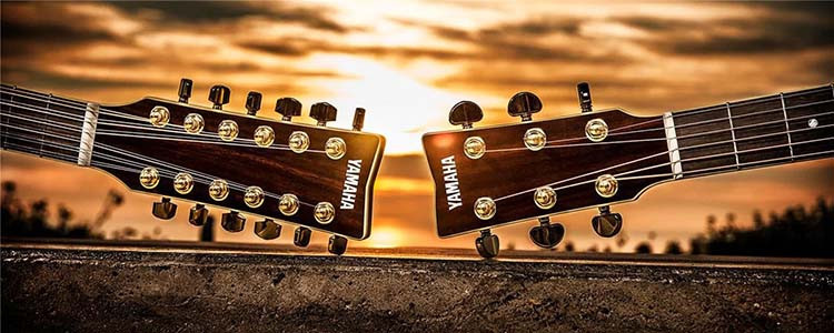 Yamaha Acoustic Guitar 12-String and 6-String Headstocks