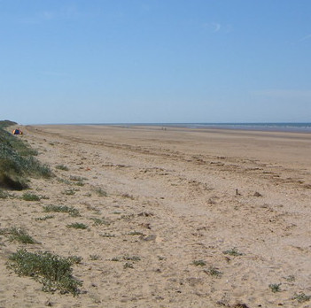 dog friendly beaches in Norfolk - Titchwell Beach