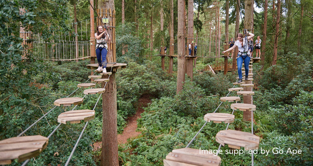 Go Ape in Norfolk