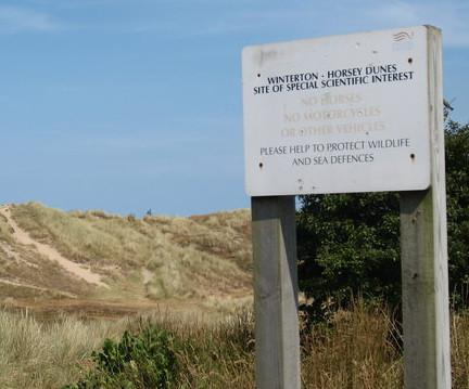 dog friendly beaches in Norfolk - Winterton on Sea